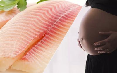 Consumo de Ômega 3 na gravidez